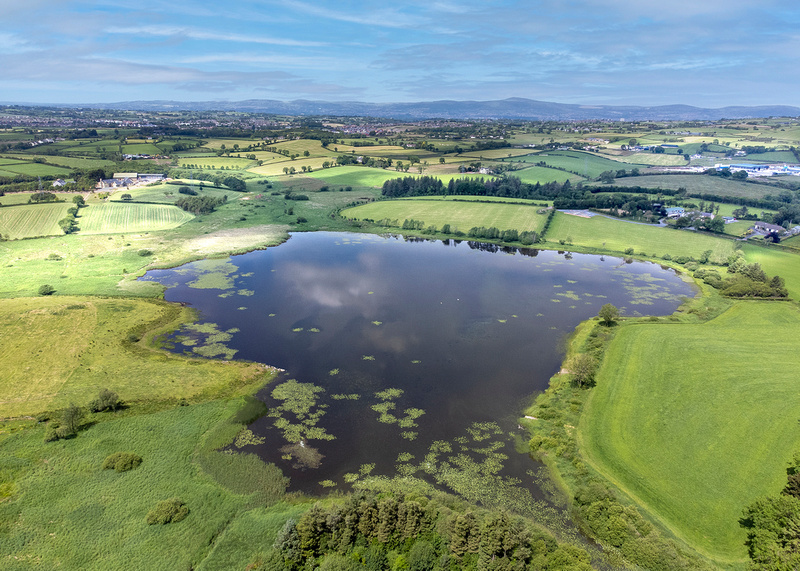 Monlough Lake, nr Carryduff